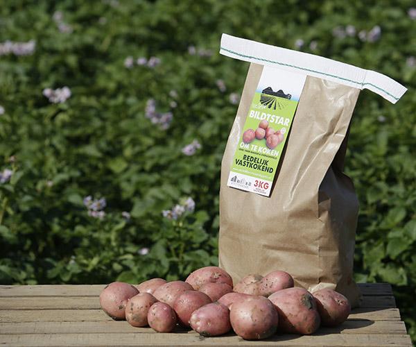 Biltstar - aardappels van Van Zwol