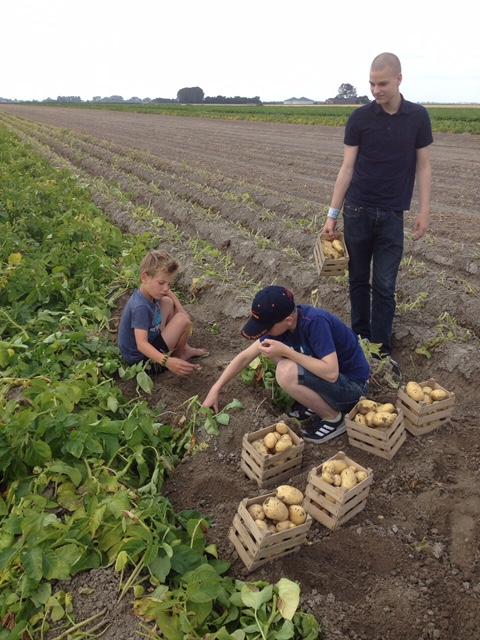 aardappelexperience in Spijk