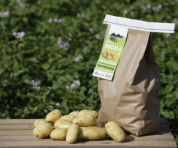 Nicola - aardappels van Van Zwol