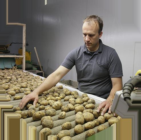 Van Zwol - aardappels